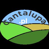 Cantalupa.pl